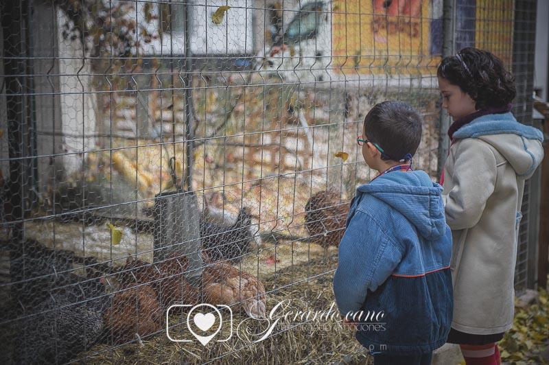 Reportaje de fotos de familia - Fotógrafo Segorbe - Fotografo de familia Castellon (51)